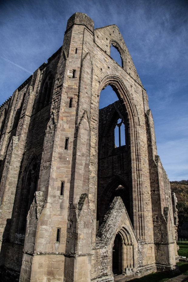 Tintern Abbey-6346